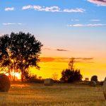 southeastern-farmland-sunset
